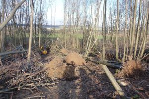 WH-Skinner-and-Sons-Coppice-Reinstatement-1