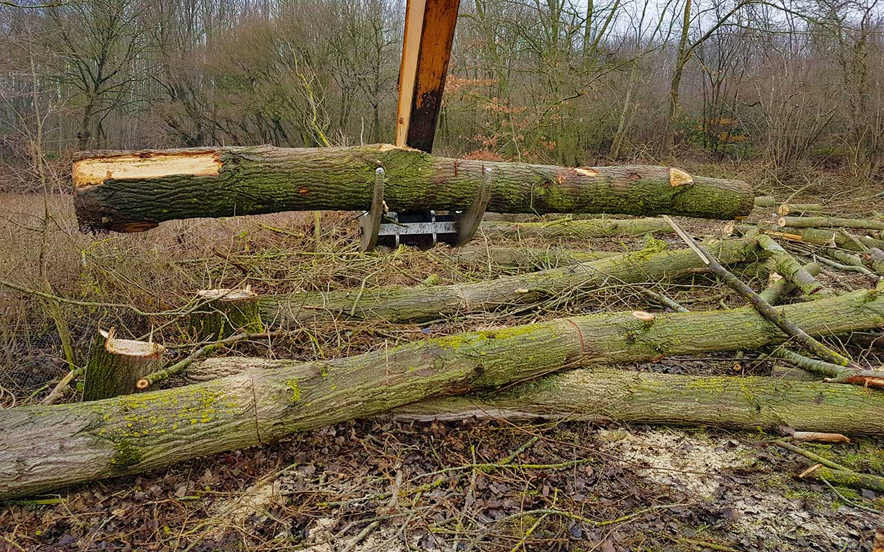 Timber Extraction by W. H. Skinner & Sons